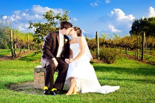 Pizzadili Vineyard Wedding